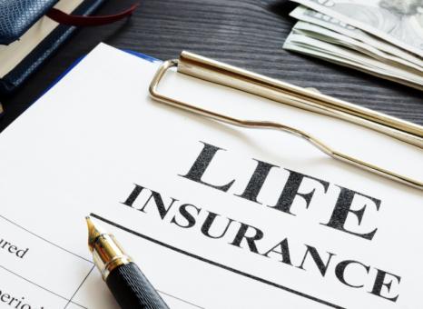 知的障害と生命保険